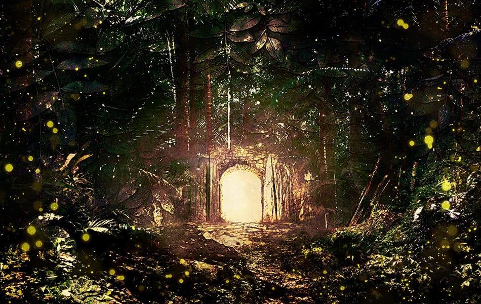 primordial forest